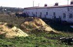 """В Донбассе закрыли """"черную"""" птицеферму, где выращивали на продажу больных кур"""