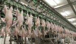 Присяжнюк хочет возобновить экспорт мяса птицы в Саудовскую Аравию
